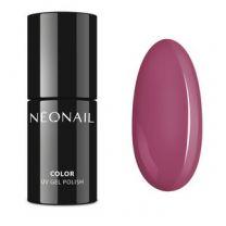 8374-7 Charming Beauty - Neonail