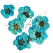 Dry Flower Single Turquoise