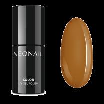7973-7 Stay Joyfull - Neonail