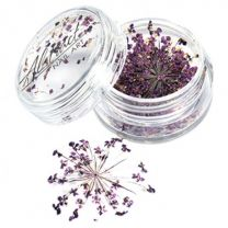Dry Flower Cluster Purple
