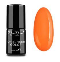 3190-1 Neon Orange - Neonail