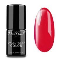 2690-7 Poppy Hill - Neonail